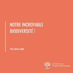 sarah labbe article biomimetisme